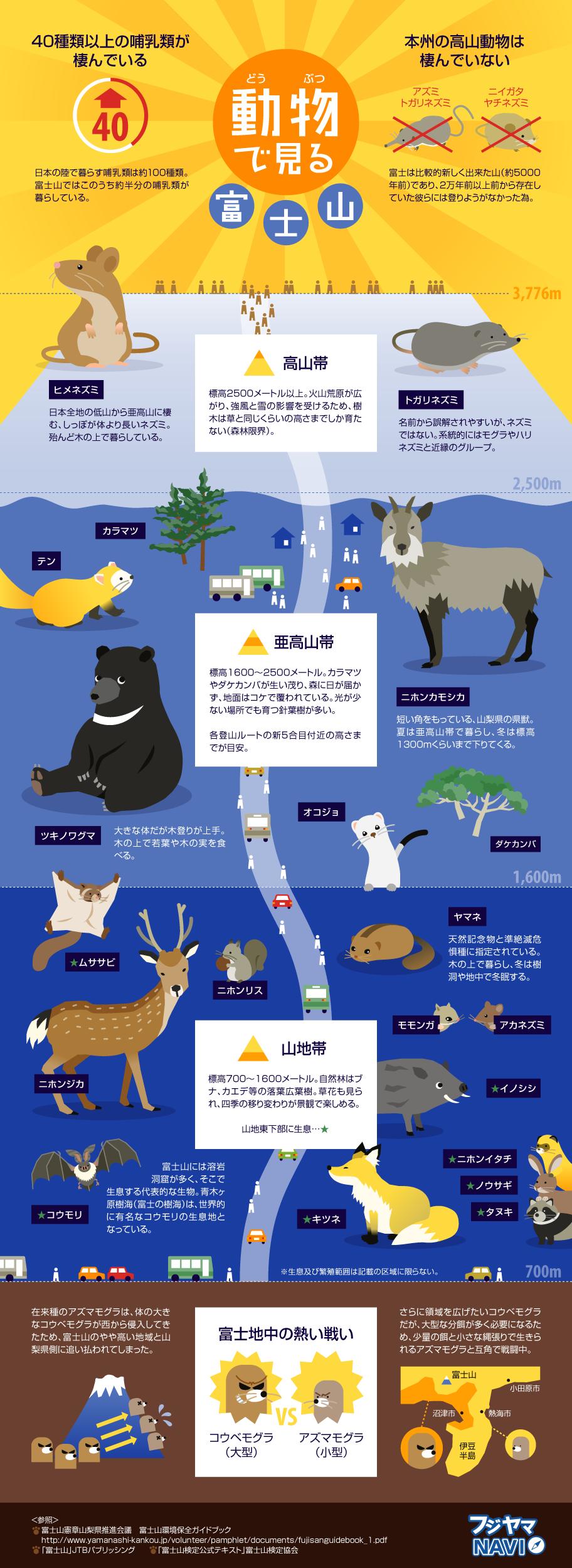 手つかずの大自然に棲む「富士山」の動物たちを表すインフォグラフィック