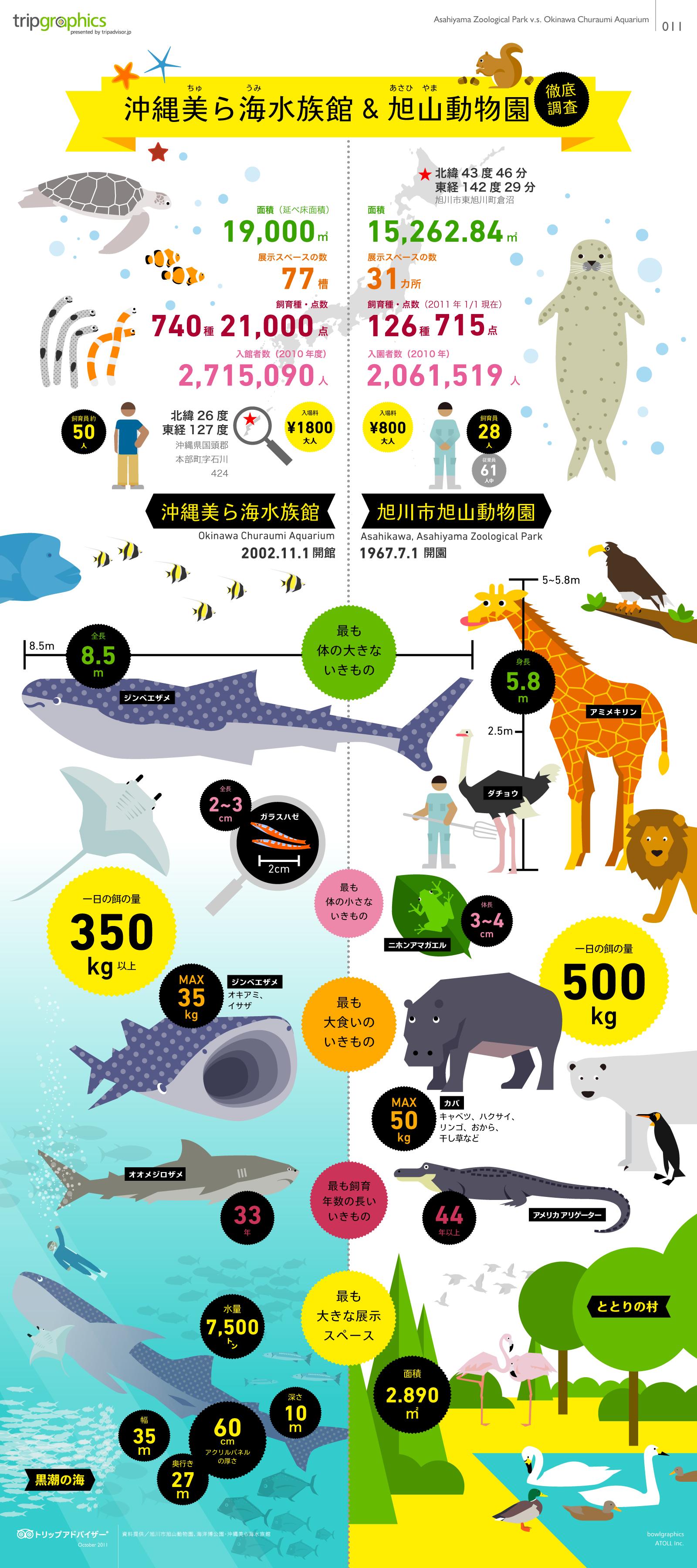 インフォグラフィック:西の沖縄美ら海水族館、東の旭山動物園。東西人気No.1は大満足