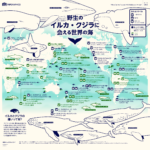 イルカやクジラに会える世界的の海のスポット