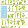 観葉植物は酸素を増やす空気清浄器。疲労回復や脳の活性化にも