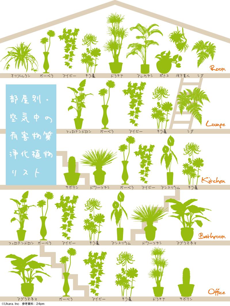 インフォグラフィック:観葉植物は酸素を増やす空気清浄器。疲労回復や脳の活性化にも