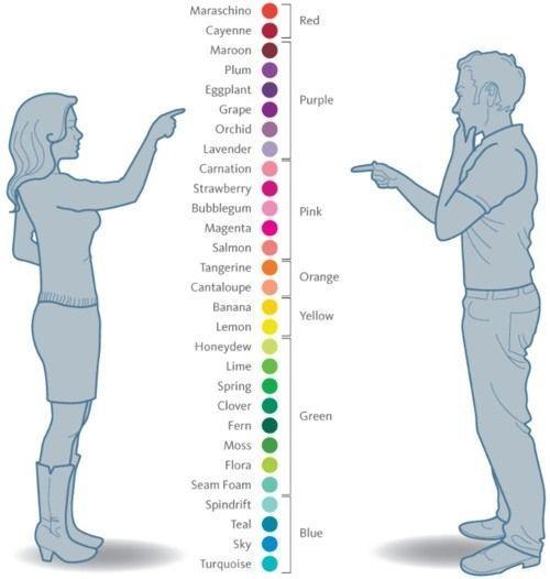 インフォグラフィック:色の見え方に男女差!男は7色、女は29色で見えている