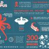 海外で「悪魔の魚」と嫌われるタコ!不思議な生態とその理由