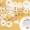 色や形が違う餃子27種類。餃子は世界中で愛されている