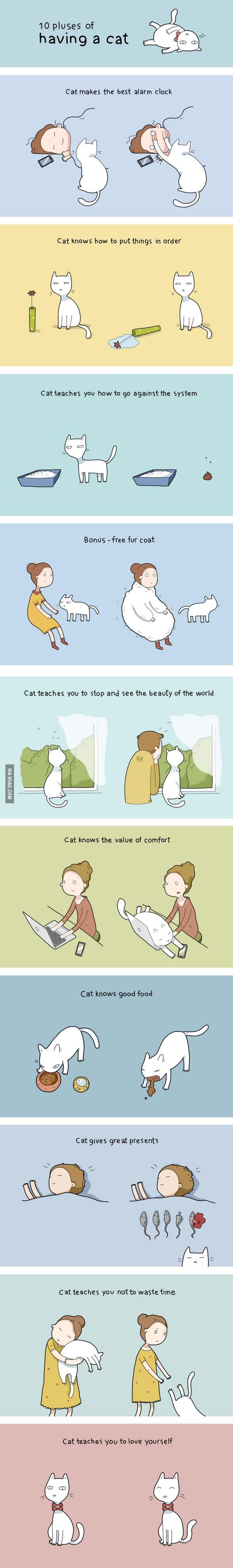 インフォグラフィック:猫が飼い主に起こす10の変化。科学が証明するペットの癒し効果