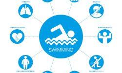 水泳の驚くべき10の利点