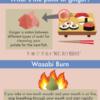 寿司の食べ方を学ぶ!