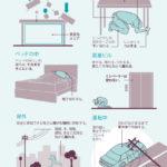 インフォグラフィック:地震から家族を守る!知っておくべき地震対策