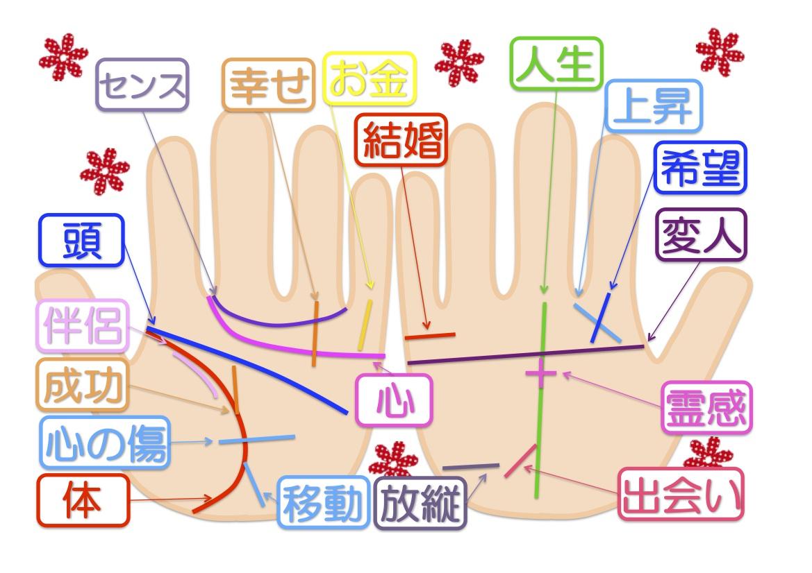 インフォグラフィック:手相の見方は左手は先天的、右手は後天的な意味。手のひらに映る未来