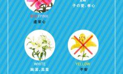 花言葉の意味。あなたはいくつ知ってる?
