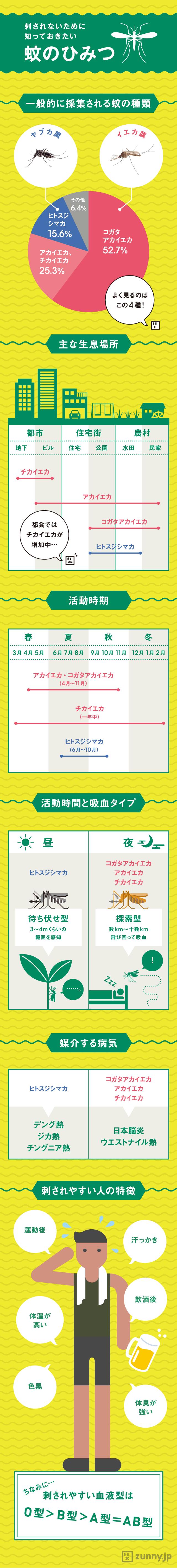 インフォグラフィック:蚊に刺されやすい人の7つの特徴。ボウフラ対策に10円玉が効果的