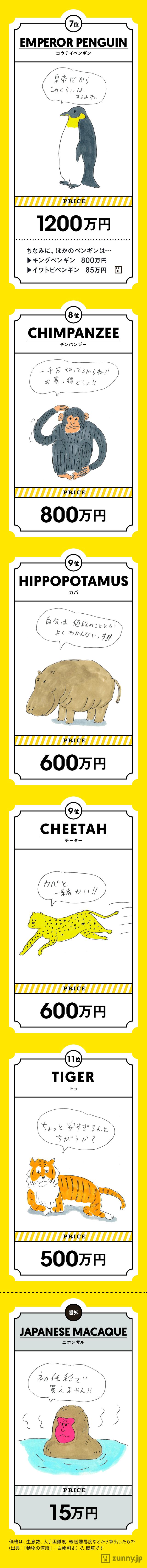 インフォグラフィック:パンダの値段は○億円!全国の人気動物園ランキング