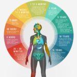 喫煙をやめることであなたの身体が変わる