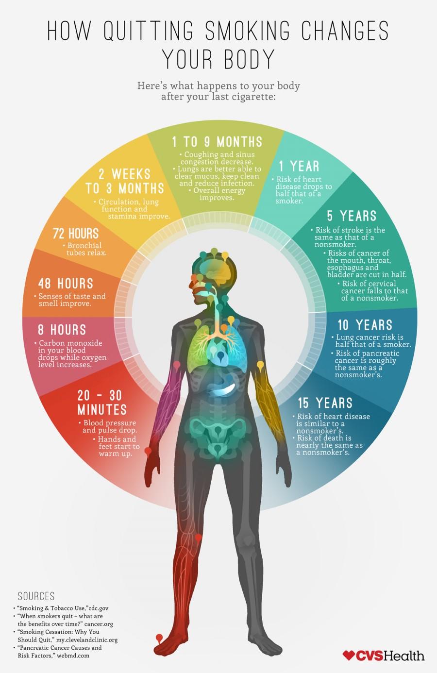 インフォグラフィック:禁煙効果は体にすぐ現れる。禁煙外来の費用目安2万円