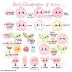 桜に関する花言葉やソメイヨシノの寿命など