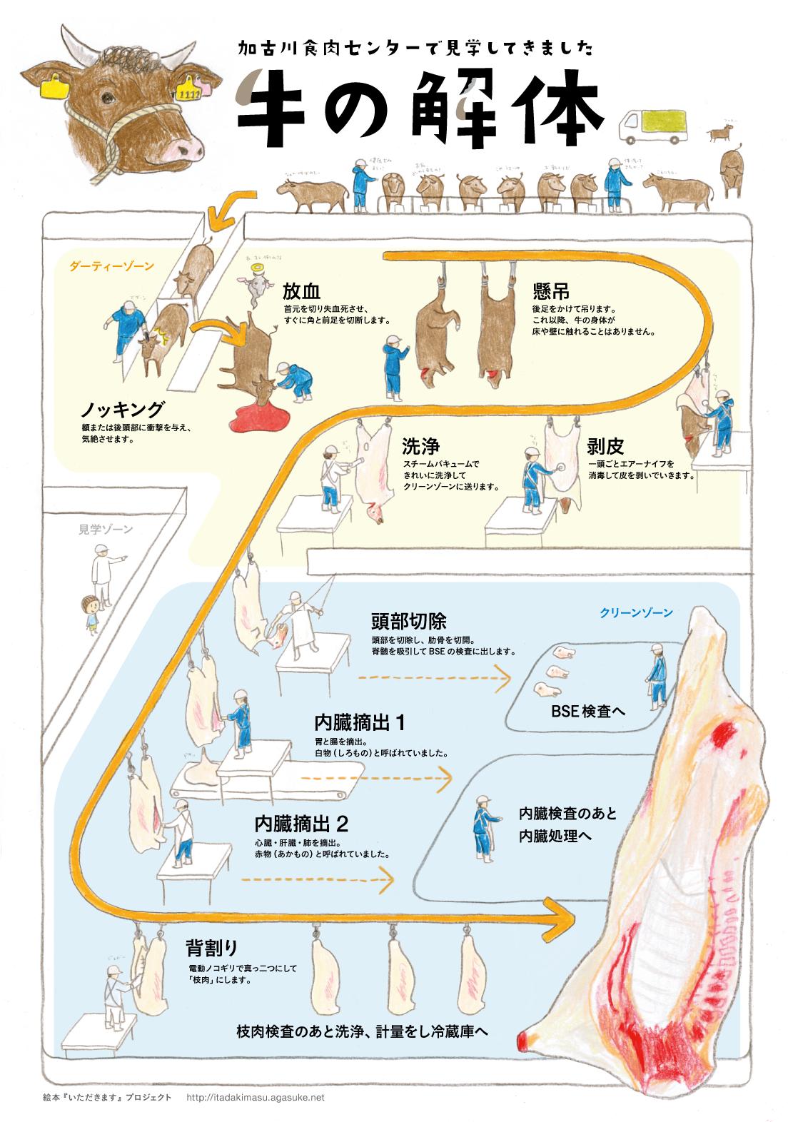 インフォグラフィック:牛の解体がおぞましすぎる!明日からベジタリアンになってしまうかも!?